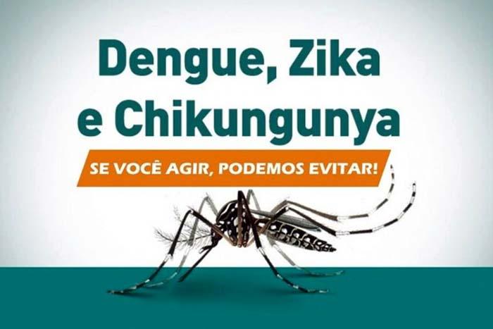 Resultado de imagem para Semana Nacional de Combate ao Aedes aegypti