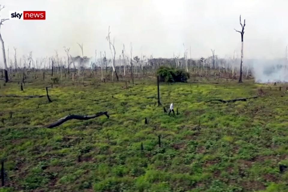 O mundo procura Rondônia como ponto de partida para denunciar as queimadas na Amazônia