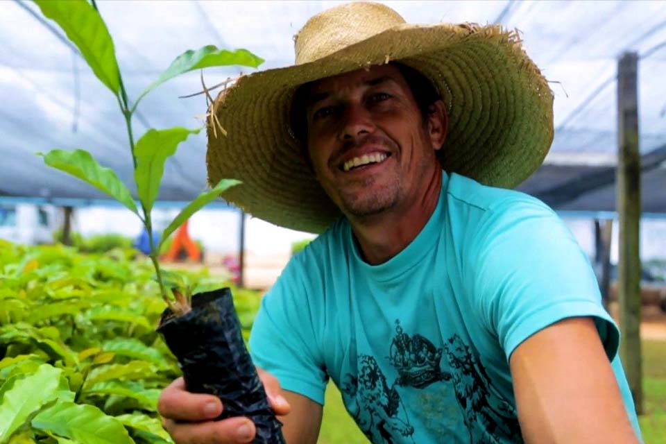 Cafeicultores de Rondônia recebem mudas de café robusta para fomentar a produção
