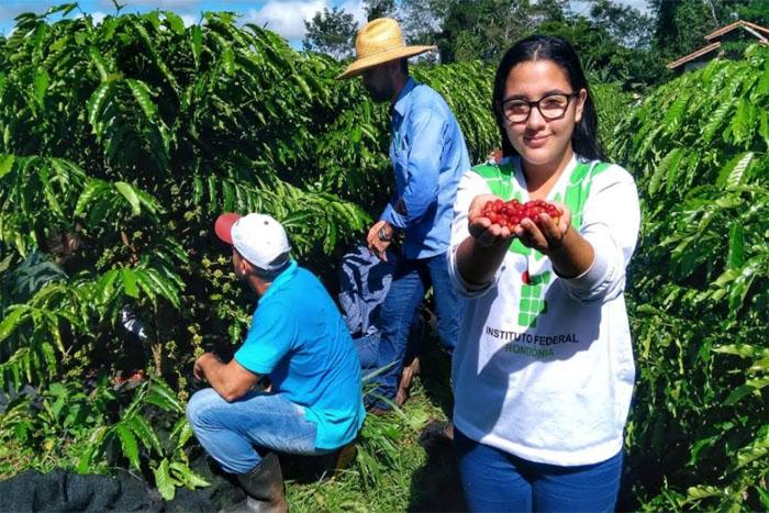 IFRO Campus Cacoal realiza primeira colheita de café