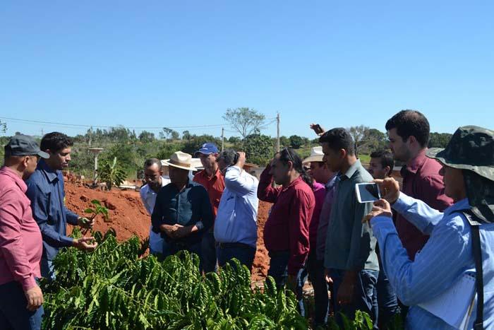 Secretário de Agricultura e Vereadores de Ariquemes visitam viveiro de café clonal