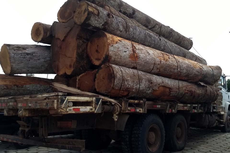 Delação feita por um empresário madeireiro vai desencadear uma operação em cadeia de Rondônia ao Pará
